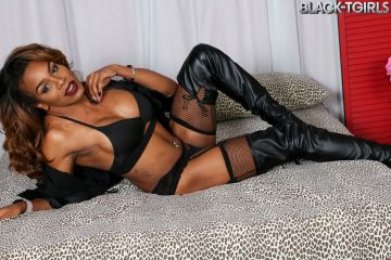 Black-TGirls.com Review
